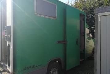Kampeerbus Mercedes Benz Edda in Uelzen huren van particulier