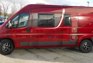 Buscamper Pössl  Red in Bad Reichenhall huren van particulier