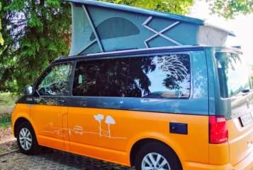 Kampeerbus VW Engelchen in Pfungstadt huren van particulier