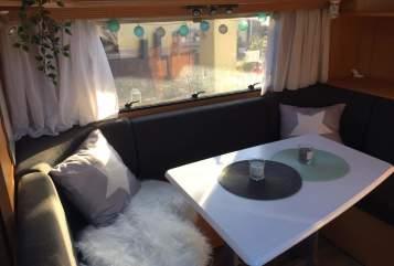 Caravan Dethleffs Camper  Chipsy in Ludwigschorgast huren van particulier