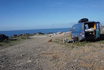 Buscamper Mercedes Der Blauwal in Kahl a. Main huren van particulier