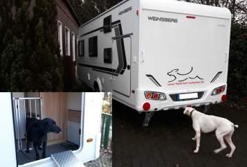 Caravan Weinsberg 4pfoten-camping in Freudenberg huren van particulier