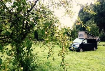 Kampeerbus Volkswagen  VW California in Konstanz huren van particulier