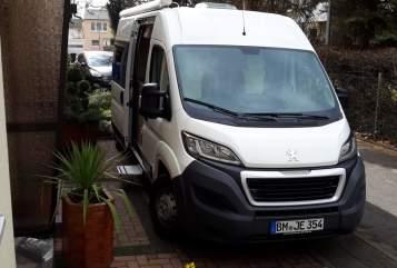 Buscamper Peugeot   Emma    in Wesseling huren van particulier