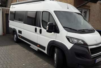 Buscamper Peugeot  DOM2 *New*  in Düsseldorf huren van particulier