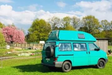 Kampeerbus VW Der Frosch in Holm huren van particulier