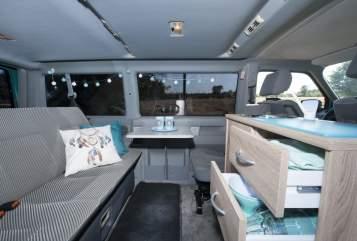 Kampeerbus VW Dreamcatcher in Mierlo huren van particulier