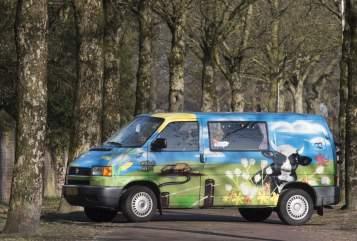 Kampeerbus VW Holland in Mierlo huren van particulier