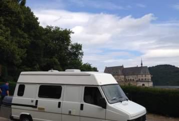 Buscamper Fiat Koning camper in Deventer huren van particulier