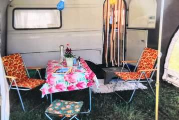 Caravan QEK Hippie Junior in Meißen huren van particulier