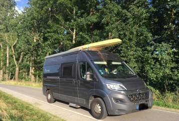 Buscamper Citroën  Grinsekatze in Radebeul huren van particulier