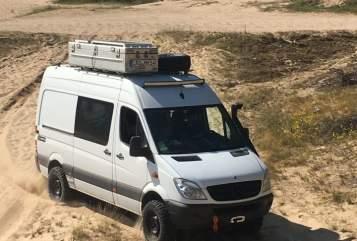 Buscamper Mercedes Benz grüner Eisbär in Bad Doberan huren van particulier