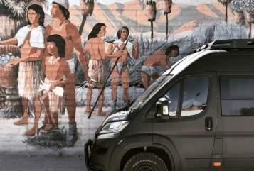 Buscamper Fiat @Campy_the_Van in 's-Gravenzande huren van particulier