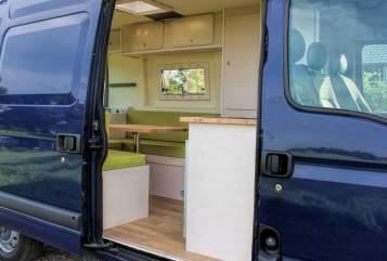 Buscamper Renault Blauwe Barrie in Gemert huren van particulier