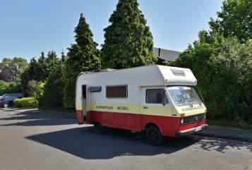 Alkoof VW LT 28 Erna in Sendenhorst huren van particulier