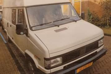 Buscamper Fiat Fiat in Best huren van particulier