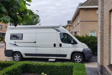 Buscamper Fiat White Label in Hoogeveen huren van particulier