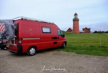 Buscamper Peugeot  Het rode bussie in Nieuw-Buinen huren van particulier