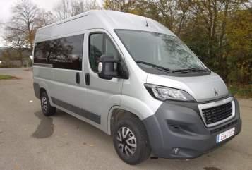 Buscamper Peugeot Silver Stalone in Weil der Stadt huren van particulier