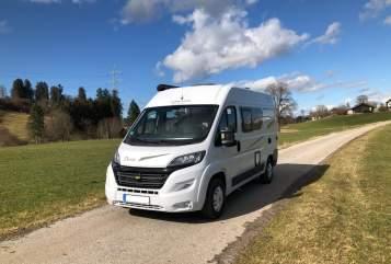 Buscamper Karmann  Dex in Seeshaupt huren van particulier