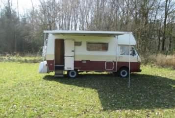 Alkoof Volkswagen Saskia's camper in Vierakker huren van particulier