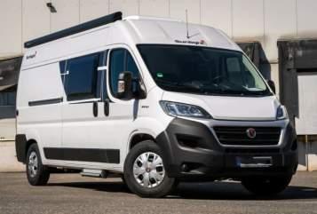 Buscamper Fiat Ducato   Sea  in Witten huren van particulier