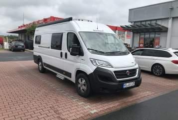 Buscamper Fiat  Camper in Münster huren van particulier