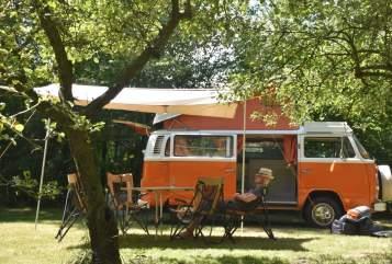 Kampeerbus Volkswagen VW T2 social wheels Willem in Liempde huren van particulier