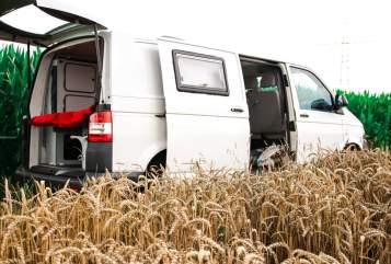Kampeerbus Volkswagen The Independent in Dortmund huren van particulier