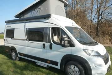 Buscamper Pössl Camper Family  in Bietigheim-Bissingen huren van particulier