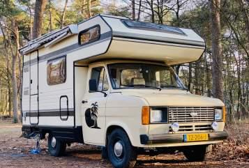 Alkoof Ford Transit Tropical Safari in Breda huren van particulier
