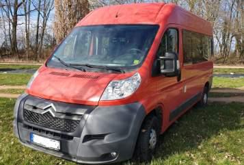 Buscamper Citroën Rote Citrone in Heidelberg huren van particulier