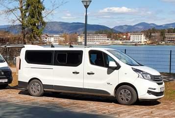 Kampeerbus Fiat  Talento 1 in Leibnitz huren van particulier