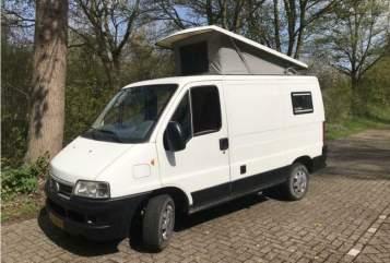 Buscamper Fiat Dreamtime in Delft huren van particulier