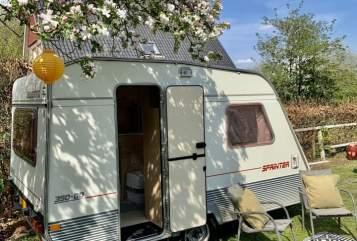 Caravan Beyerland C'est La Vie in Doetinchem huren van particulier
