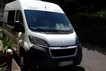 Buscamper Citroen Bruno ,  Euro 6 in Wesseling huren van particulier