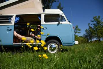 Kampeerbus Volkswagen VW T2 social wheels Woezel in Liempde huren van particulier