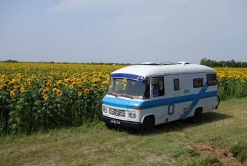 Buscamper Mercedes Betsy in Tilburg huren van particulier