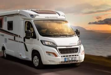 Halfintegraal Peugeot  Der Schöne in Surwold huren van particulier