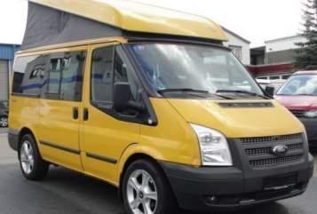 Kampeerbus Ford Transit Westfalia Golden Nugget in Steinheim an der Murr huren van particulier