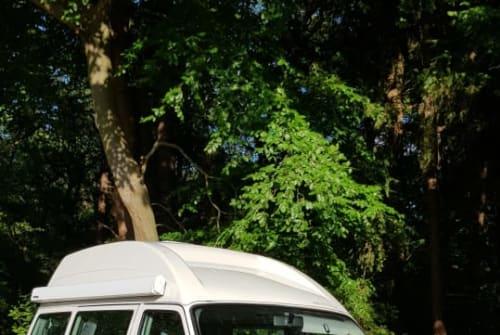 Buscamper volkswagen vw westfalia  in Hoogeveen huren van particulier