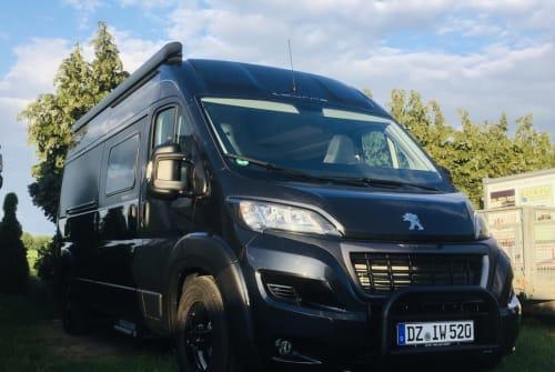 Buscamper Peugeot BLACK LION in Schkeuditz huren van particulier