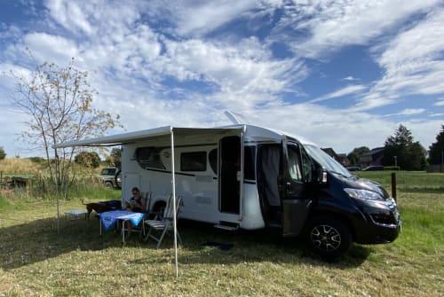 Halfintegraal Carado Citroën  Urmel in Wardenburg huren van particulier