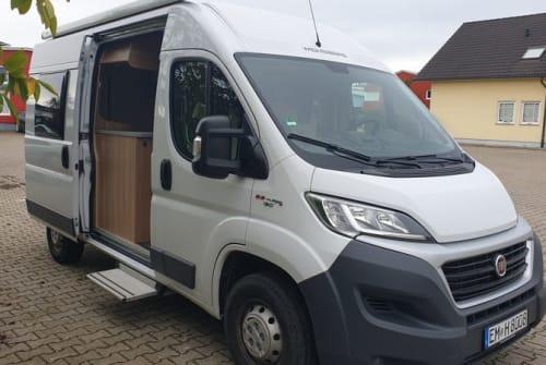 Buscamper Weinsberg Fuchs in Endingen am Kaiserstuhl huren van particulier