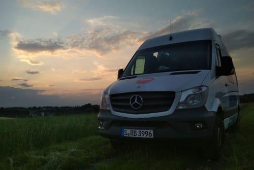 Buscamper Mercedes-Benz Der Putzdienst in Radolfzell am Bodensee huren van particulier