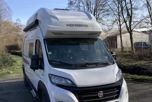 Buscamper Weinsberg  Strandperle in Bremen huren van particulier