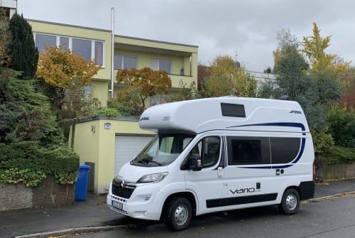 Buscamper Pössl Pauli in Göttingen huren van particulier