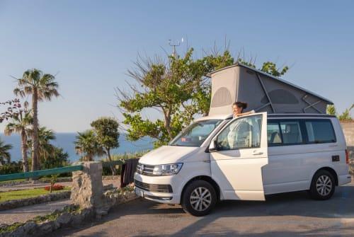 Kampeerbus VW Klas California in Adelheidsdorf huren van particulier