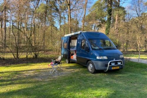 Buscamper Fiat Edu Gluten-vrij in gemeente Groningen huren van particulier