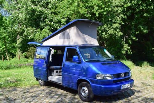 Kampeerbus Volkswagen California Blue in Mettmann huren van particulier